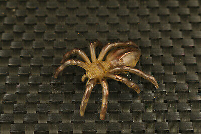 valuable chinese old bronze hand casting Spider statue collectable netsuke