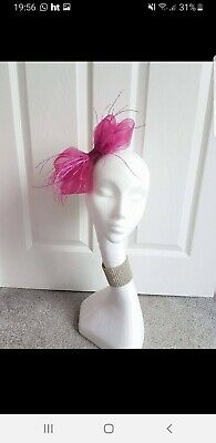 Hollies Fascinators Pink Crin Races Wedding Comb Feathers
