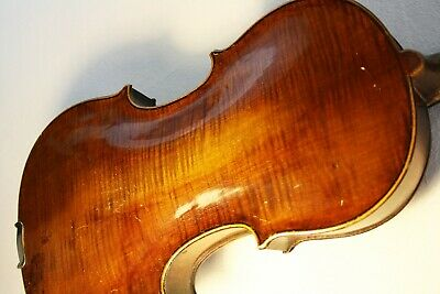 Fine Antique violin Italian style 4/4 labeled GUASTALLA DANTE geige 小提琴 ヴァイオリン