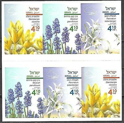 Israel Booklet Year 2019 Autumn Flowers