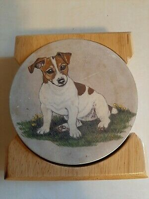Jack russell terrier puppies Coaster Set