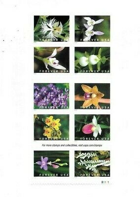 US Stamps, 2020 WILD ORCHIDS, Mint Booklet Pane of 10 Forever Stamps,  MNH