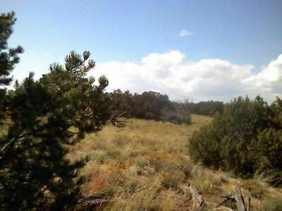 37.51 Ac Northern Arizona, Rd Frontage,Water,Borders State Land