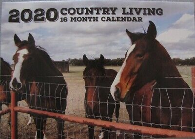 2020 Paperback Wall Calendar - Country Living