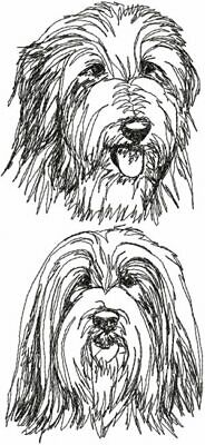 BEARDED COLLIE Dog Personalized Embroidered Fleece Stadium Blanket Gift