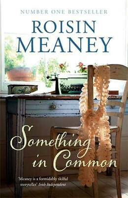 Something in Common by Roisin Meaney (author)