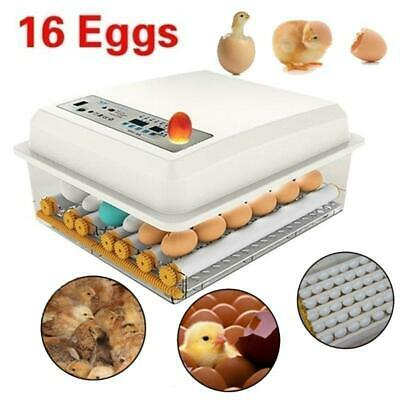 *Small Egg Hatcher Machine 16 Eggs Digital Mini Automatic Incubators with Turner