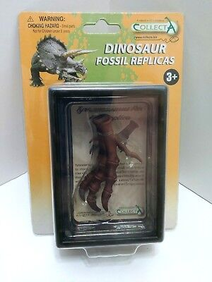 T Rex CollectA 89284 Tyrannosaurus Dinosaur Foot Fossil Replicas New in Pack