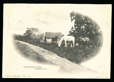 Used Postcard – Woodcutters Home Barossa with Horses  (961)