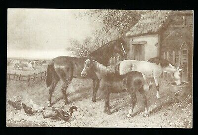 Used Postcard – A Group of Horses  (949