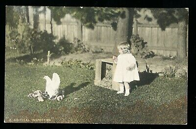 Used Postcard – Child with Hen and Chickens (947)