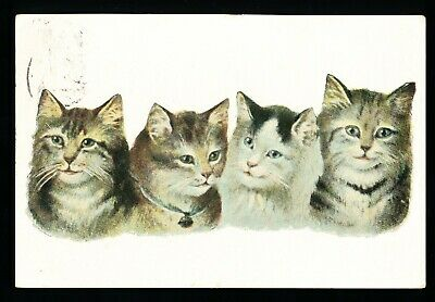 Used Postcard – Four Cats (941)