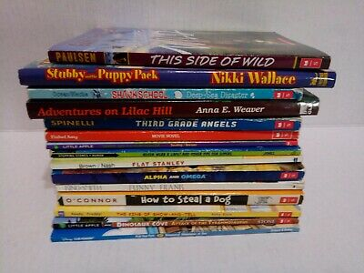 Lot of 15 Boys Chapter Books Random Authors