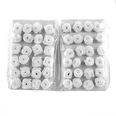 48 Pieces Dior Rose White (2VE), to Glue on, Scatter and Sew Ø 1,5cm