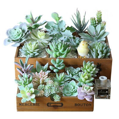 Mini Artificial Fake Succulent Bonsai Succulents Plants Plastic Flower Decor