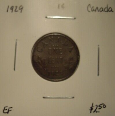 Canada George V 1929 Small Cent - EF