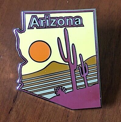 ARIZONA  Willabee & Ward STATE PIN from United States Collector Pins + INFO CARD