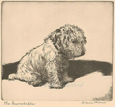 THE INCONSOLABLE DOG 1935 PRINT by Diana Thorne SEALYHAM TERRIER