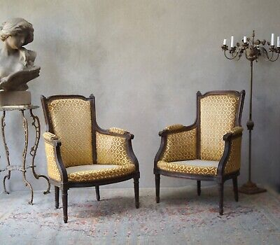 Antique French Armchairs 19th Century - Delivery Available