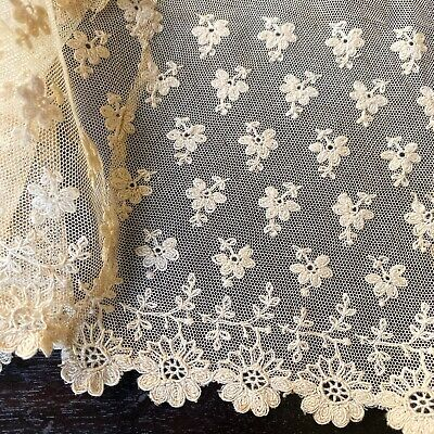 Antique Floral Tambour Net Lace French Needlelace Cotton Dress Trim Flounce