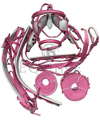Deluxe Webbing Driving Harness - Pink With White Detailing - Horses