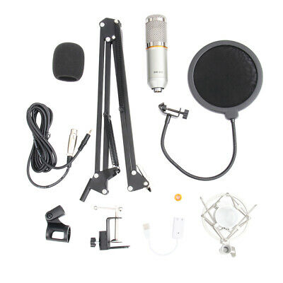 Condenser Microphone Kit Arm Stand Shock Mount Pop Filter Audio Vocal Studio Mic