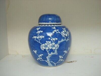 1x chinese 19th century qing period  blue white large  ginger jar<20cm>