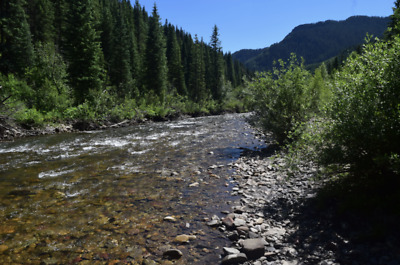 "✅20 Acre Gold Mining Claim 😎Placer ""Dolores River😎,✅Dolores County Colorado✅"