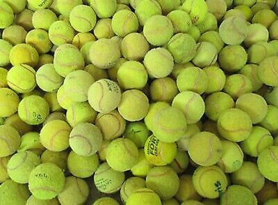 110 used tennis balls, all top quality makes, good condition ideal for dogs.