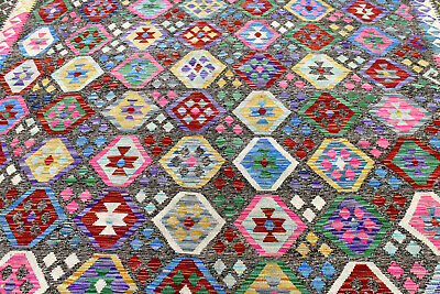 10X15 Exquisite Masterpiece Mint Hand Knotted All Wool Meymeh Sheerazz Kilim Rug