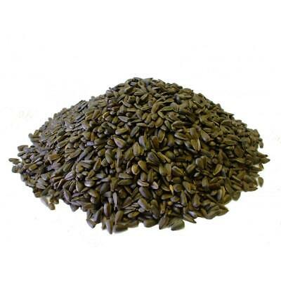 Copdock Mill Black Sunflower Seeds for Wild Birds - 12.75kg