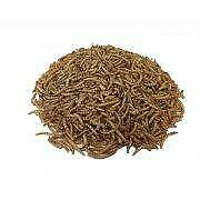 Copdock Mill Dried Mealworms Carton - 10kg