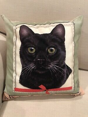 "Black Cat ""A Home Without A Cat Is Just A House"" Decorative Velvet Pillow 16x16"