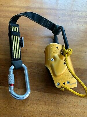 Petzl Asap With Fall Arrester And Carabiners Absorbica Mint
