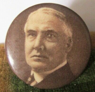 WARREN G HARDING Celluloid Picture Pinback Button 1920 President Election