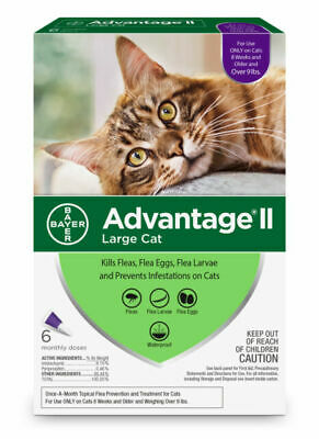 Bayer Advantage II for Large Cats (9 lbs and Over) - 6 Dose