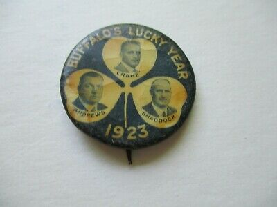 Buffalo New York Local Governor Pin Back Campaign Button Crane Andrews Shaddock