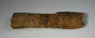 Egyptian Coptic Papyrus Scroll unopened, 2nd to 6th Century AD