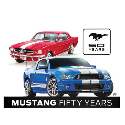 Ford Mustang 50th Anniversary Car Evolution Chart Muscle Fabric Poster  H-154