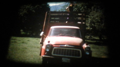 200Ft Super 8 Cine Film. 1970's USA Washington State, Mount Rainier Park (RK31)