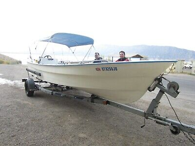 Rugged commercial built Panga fishing and expedition boat