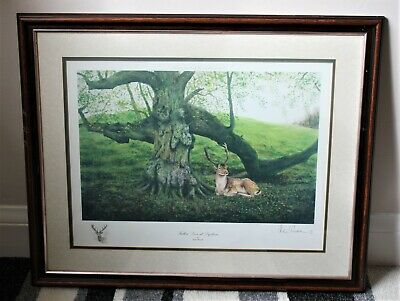 Signed Limited Edition Print (28/500) of Fallow Deer at Dyrham by Jack Russell