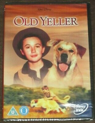 Disney Old Yeller Coloring Book 1957 Whitman Pub Nothing Colored In Vg 23 93 Picclick Uk