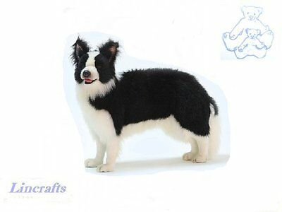 A Realistic Standing Border Collie Plush Soft Toy Dog by Hansa 4563