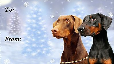 Dobermann Christmas Labels by Starprint