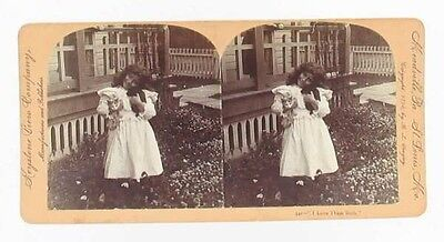 Antique Victorian Stereoview Real Photo Card Girl Kitten Cat & Puppy Dog Love