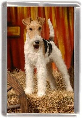 Wire Fox Terrier Fridge Magnet No 6 by Starprint