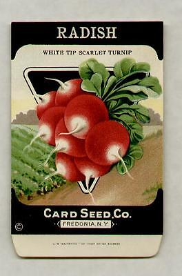 1920's LITHO CARD CO. WHITE TIP RADISH SEED PACKET