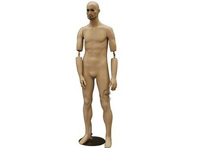 Male Mannequin Manequin Manikin Dress Form Display #BC8
