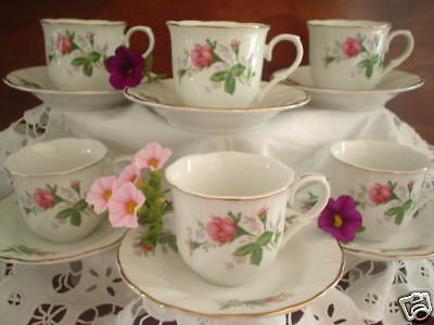 Vict. Rose Children's China Tea Cups & Saucers Set of 6